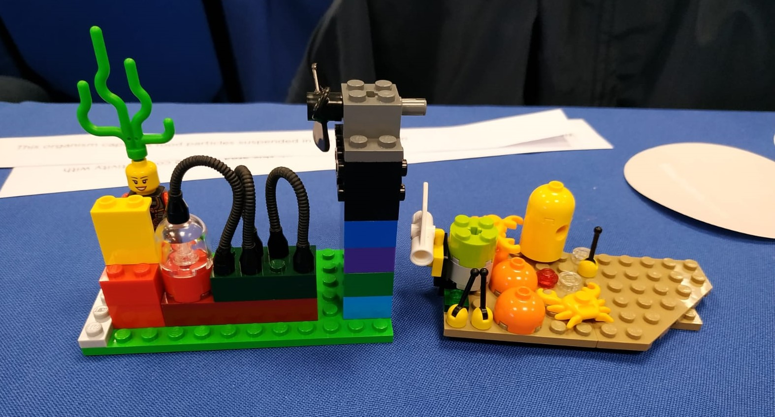 Sponge research in the lab (l) and in the field (r) illustrated with Lego © Johanne Vad